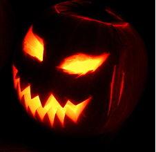 "Halloween Special on ""Carolyn Fox's Hollywood Spotlight"""
